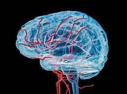 New Brain Disorder in Canada