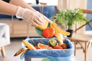 New Food Freezing Enhances Quality Curbs Energy Usage